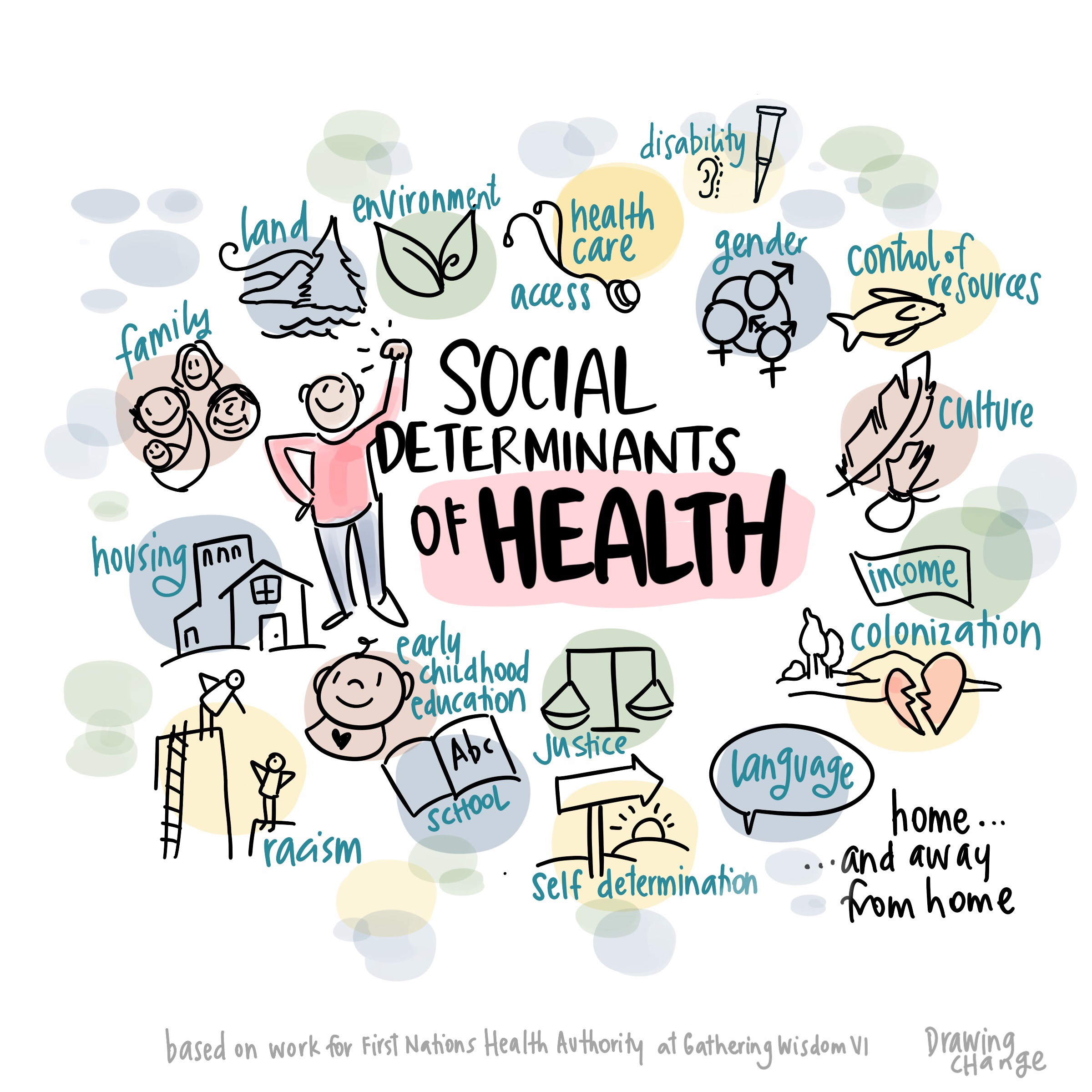 social determinants of indigenous health pdf