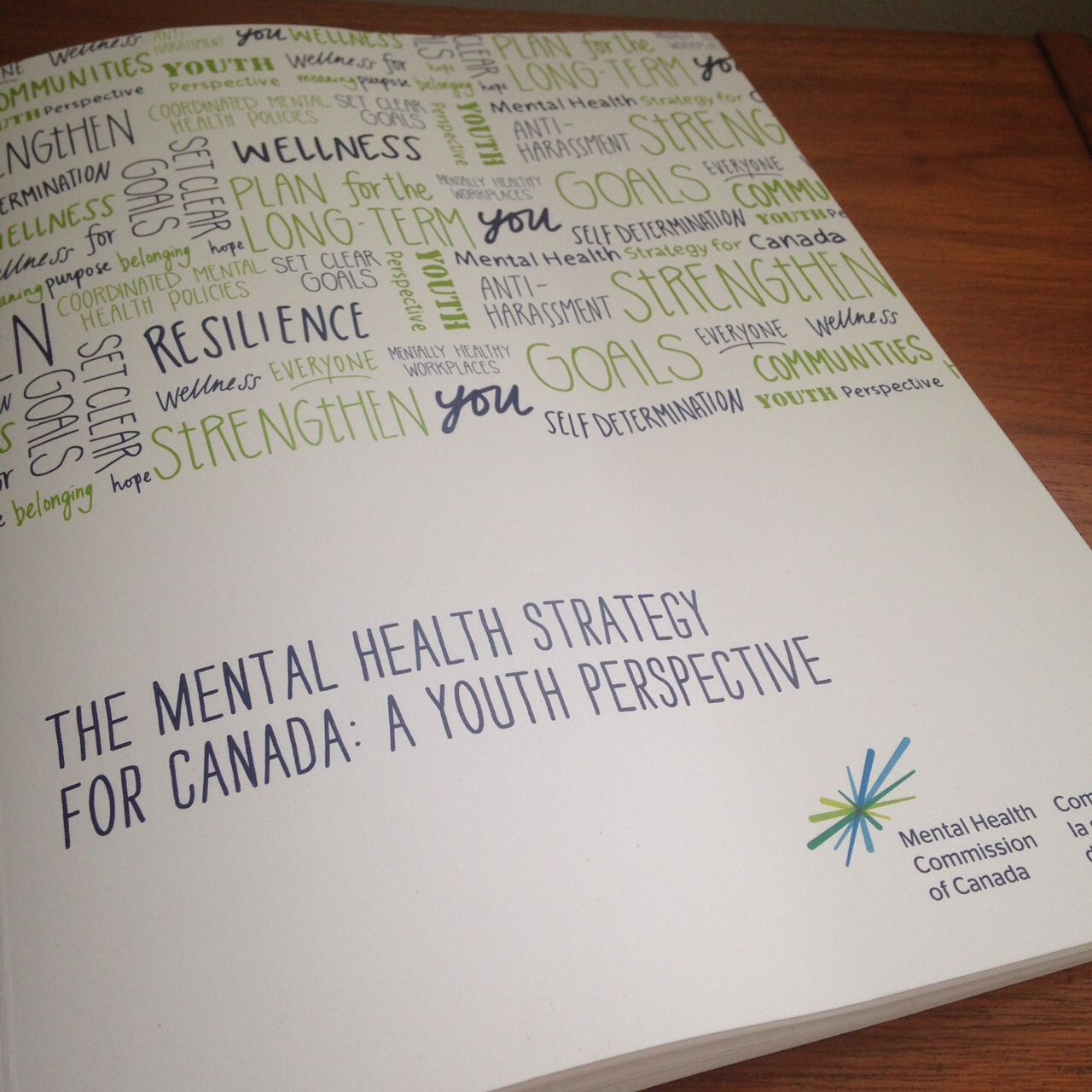 Mental Health Commission of Canada Youth Strategy report- illustrations