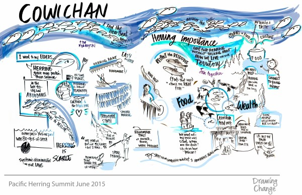 Pacific Herring Summit Cowichan graphic recording