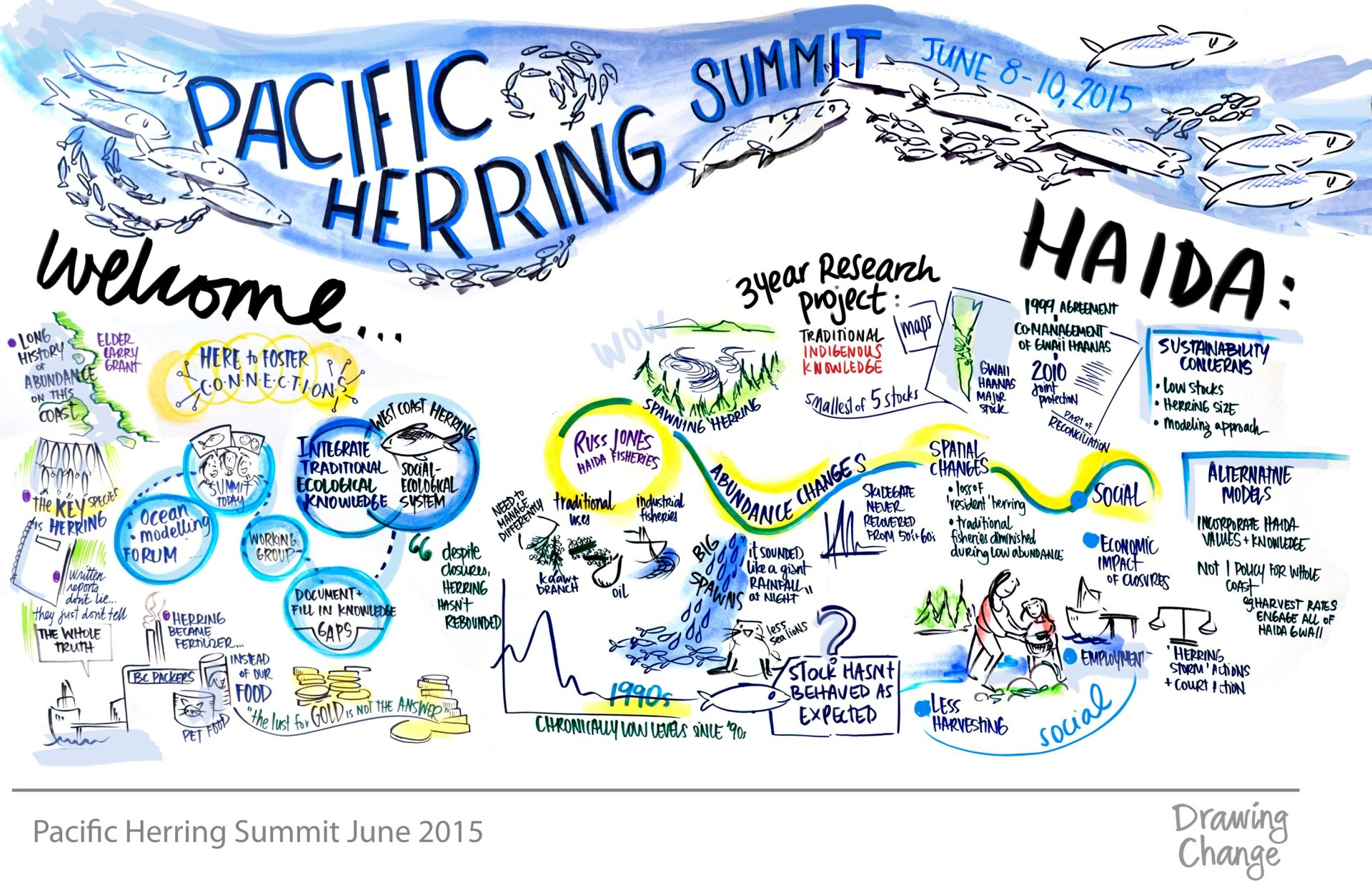 graphic recording and visual facilitation pacific herring summit indigenous knowledge